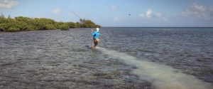Chasing Down a Grand Cayman Bonefish on the Flats